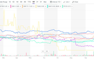 Micro-Cap Supply Chain Software Stocks: Ouch!